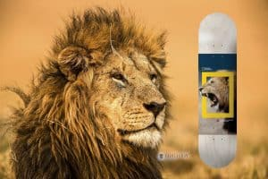 Tabla Skate Element Skateboards x National Geographic Nyjah Huston Lion